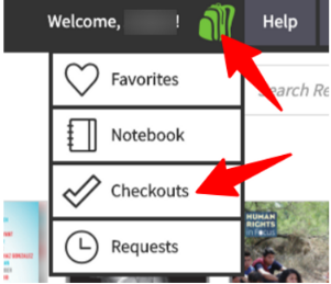 "The books you have checked out from Mackin appear in the Mackin ""book bag"" drop down menu where it says ""checkouts."""